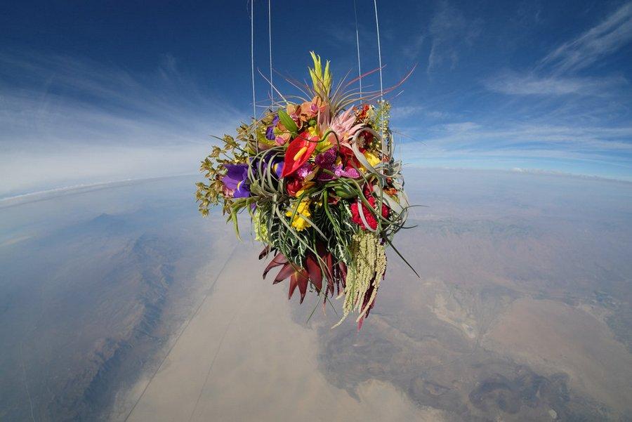makoto-azuma-exobiotanica-botanical-space-flight-4