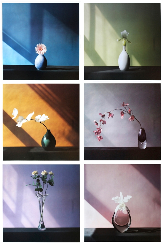 robert-mapplethorpe-6-flowers-complete-set-of-6-works-with-colophon-prints-and-multiples-photographs-offset-lithograph-zoom_550_825